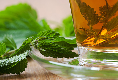 493ss_thinkstock_rf_stinging_nettle_tea